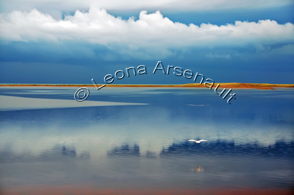 CANADA;PRINCE EDWARD ISLAND;ABRAM-VILLAGE;PRINCE COUNTY;BIRDS;SEAGULLS;CLOUDS;WATER;SAND BAR;REFLECTION;SEASCAPE;HORIZONTAL